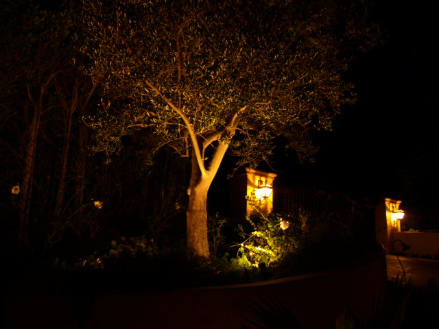 Lighting Simi Valley Landscape Lights