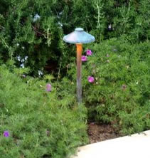 Lighting  Simi Valley Landscape Lighting Mushroom Light
